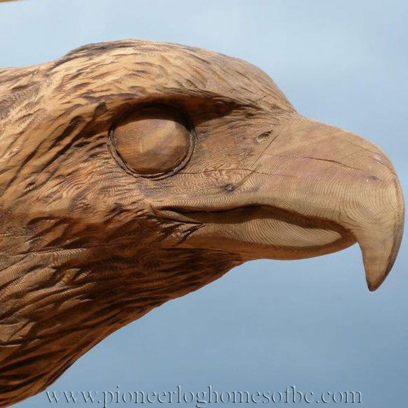 Free Wood Carving Patterns Birds
