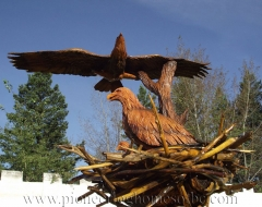 carving-bird-eagle-m - wood carving