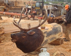 carving-elk - wood carving