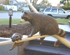 carving-raccoon - wood carving