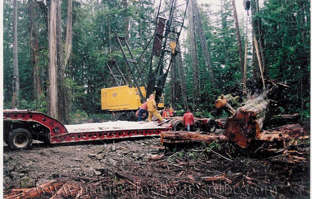 cedar ranch log home custom built log homes pioneer