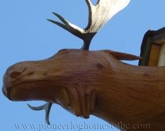 gaviota-de-carving-moose