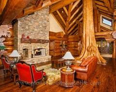 Living Room 499