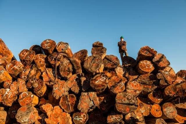 Log Inventory Bryan Sr.