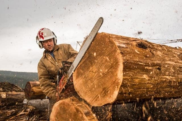 Pioneer launches new division log homes of bc